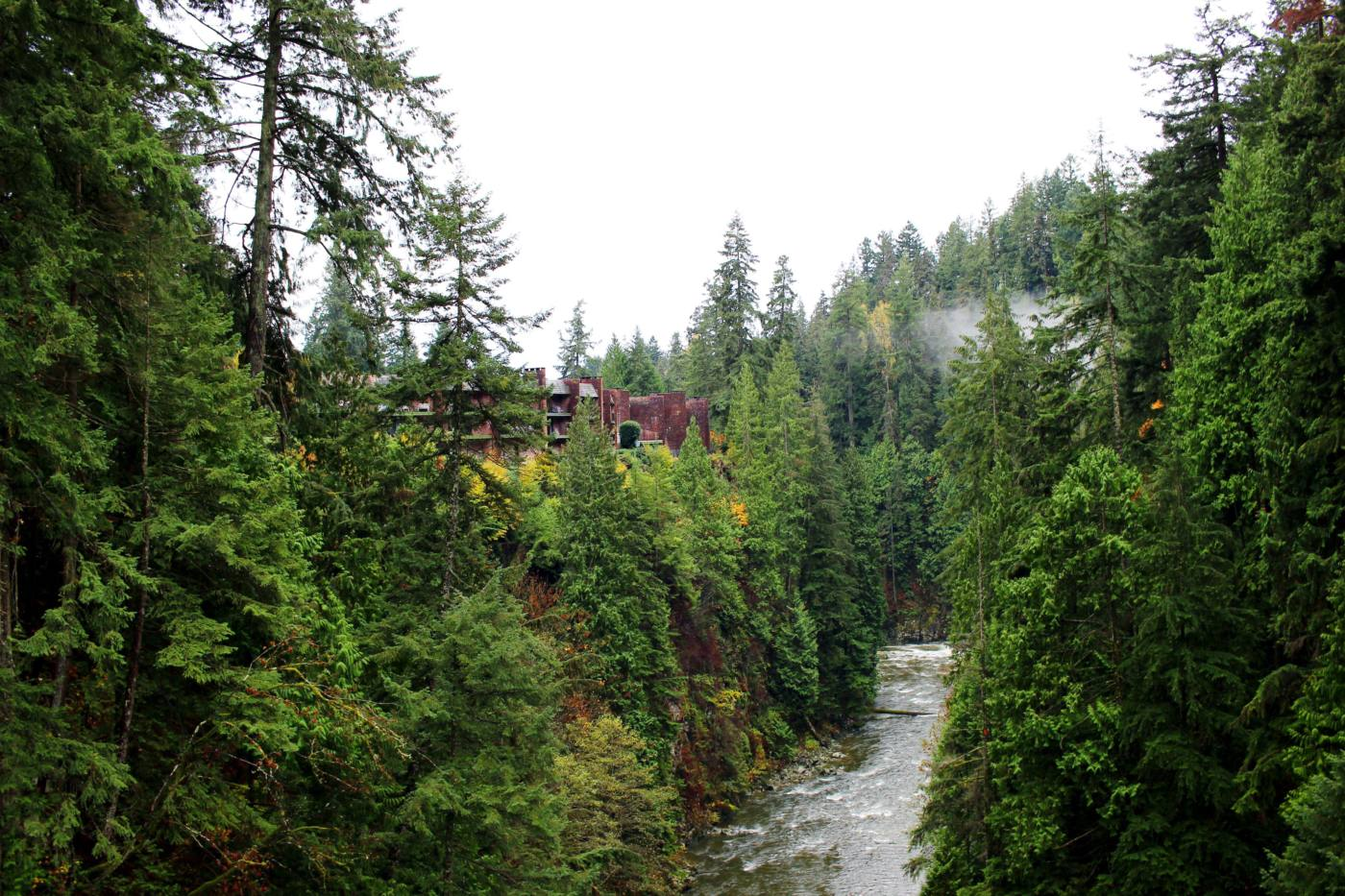day-trip-from-seattle-to-vancouver-capilano-suspension-bridge-setarra