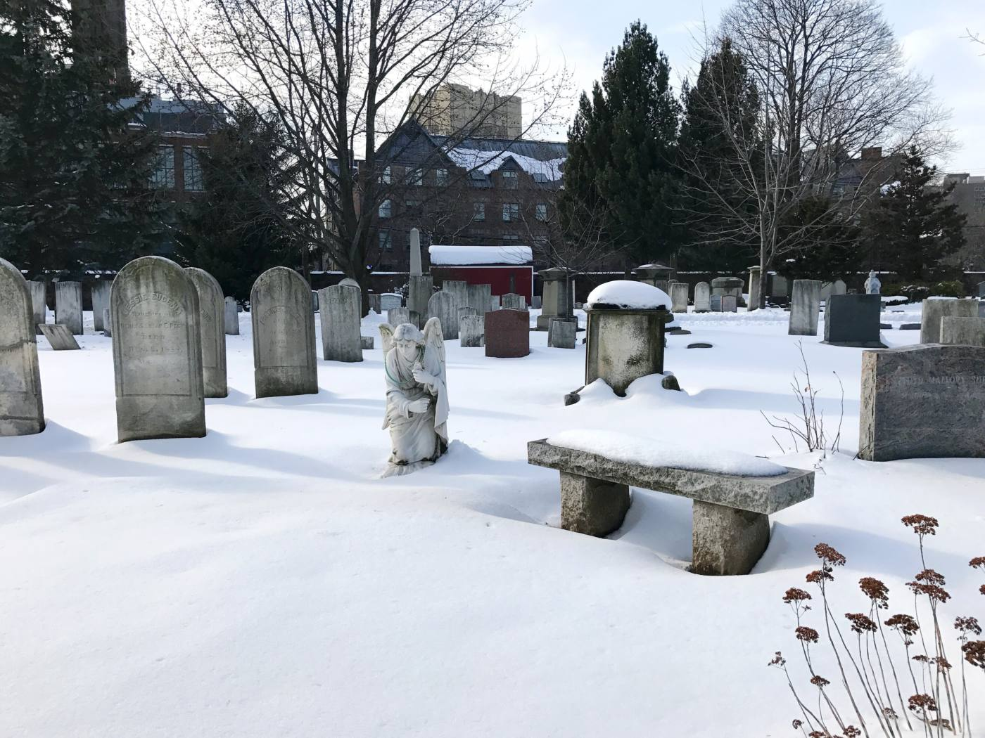new-haven-connecticut-grove-street-cemetery-setarra